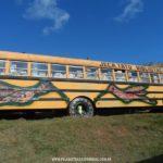 Ônibus Biblioteca