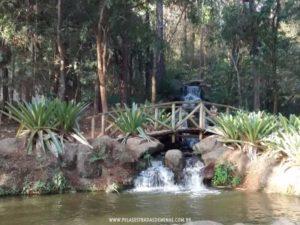Parque Vale Verde - Bosque