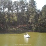 Parque-Vale-Verde-Fotos-13