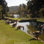 Parque-Vale-Verde-Fotos-15