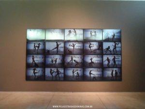 fotos-inhotim-12