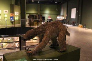 Museu de Ciências Naturais da PUC Minas