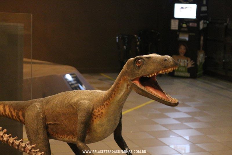 Dinossauro - Museu de Ciências Naturais da PUC Minas
