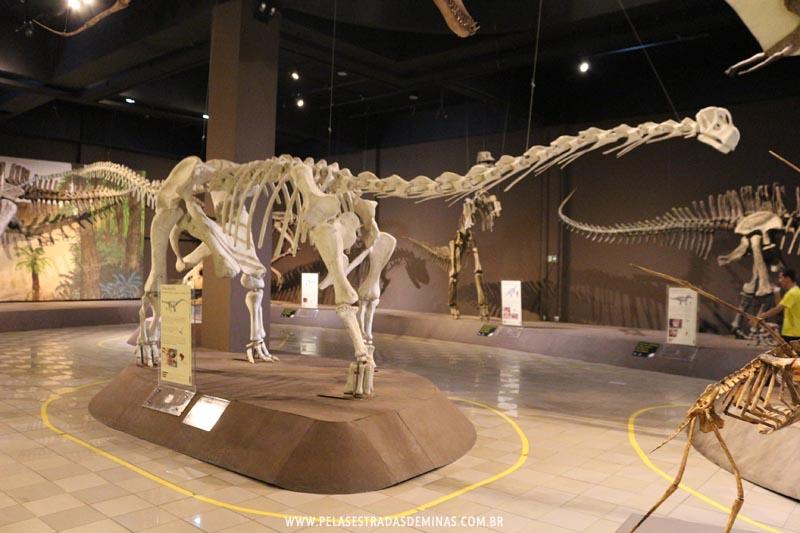 Dinossauros do Museu de Ciências Naturais da PUC Minas