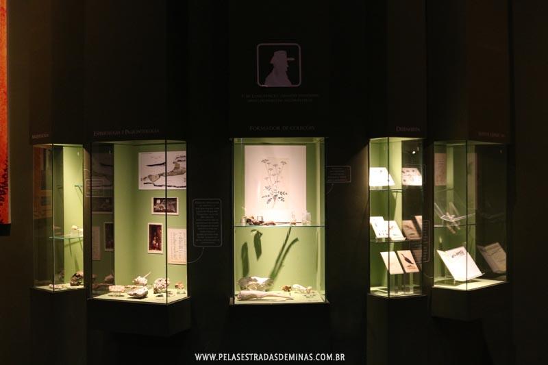 Objetos Peter Wilhelm Lund - Museu de Ciências Naturais - PUC Minas