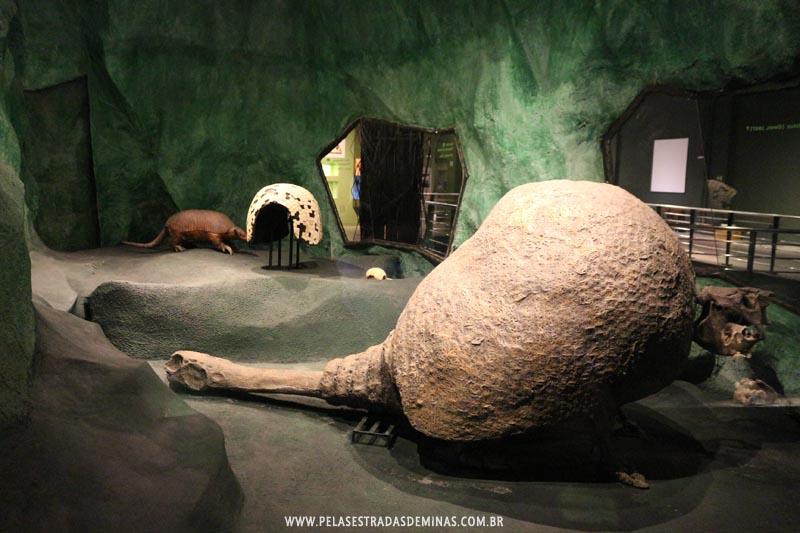 Tatu Gigante - Museu de Ciências Naturais da PUC Minas