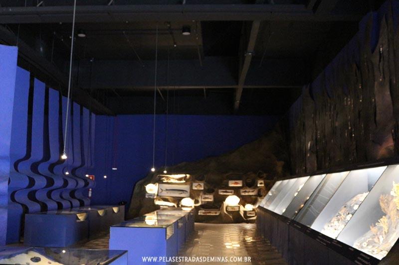 Exposição Vida na Água - Museu de Ciências Naturais da PUC Minas