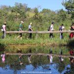 Parque Estadual Serra Verde em Belo Horizonte – Trilha dos Bichos