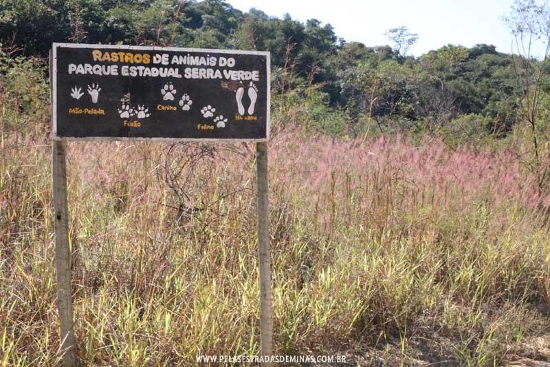 Parque Estadual Serra Verde em BH - Rastros de Animais