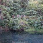Trilha Manancial Catarina – Parque Estadual da Serra do Rola-Moça – Projeto Nova Lima Entre Trilhas / Circuito Jardim Canadá
